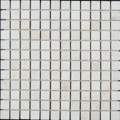 Honed 1 x 1 Limestone Mosaic Tile in Corinthian Fossil