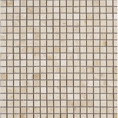 Polished 0.63 x 0.63 Mosaic Tile in Crema Nouva