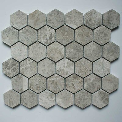 Honeycomb Hex Polished 2 x 2 Marble Mosaic Tile in Silver Shadow