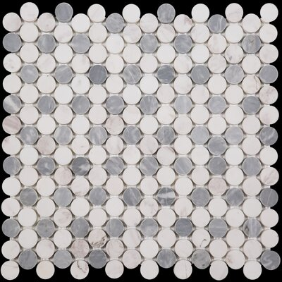 Penny Round Bianco Dolomite Honed 12 x 12 Marble Mosaic Tile in Bardiglio