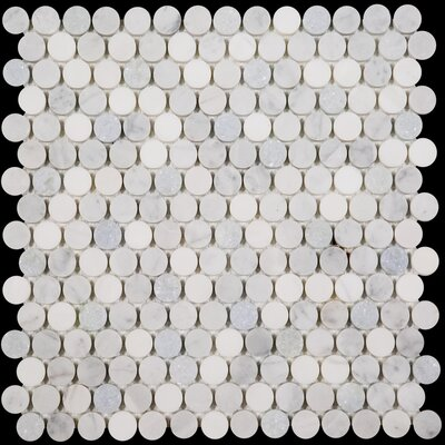 Penny Round Bianco Dolomite Honed 12 x 12 Marble Mosaic Tile in Blue Celeste