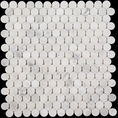 Penny Round Honed Marble Mosaic Tile in Bianco Carrara