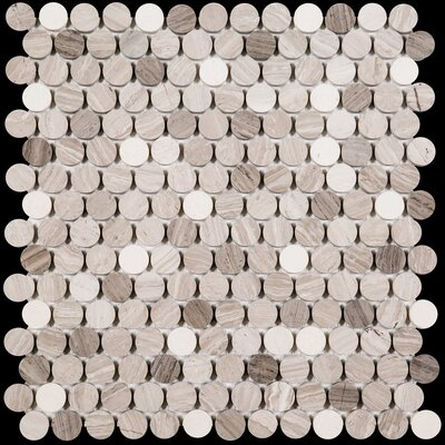 Penny Round Honed 0.75 x 0.75 Marble Mosaic Tile in Wooden White/Athens Gray