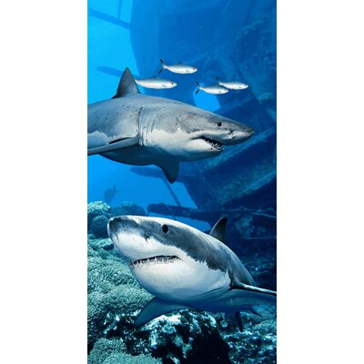 Shark Endanger Beach Towel
