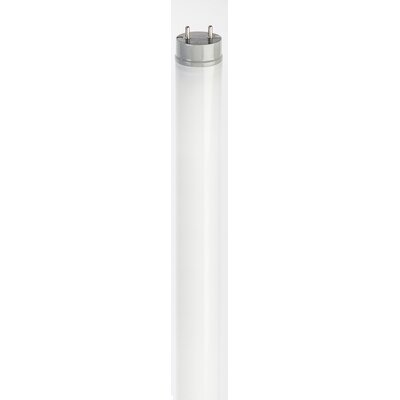 T8 LED Light Bulb Wattage: 20, Bulb Temperature: 5000