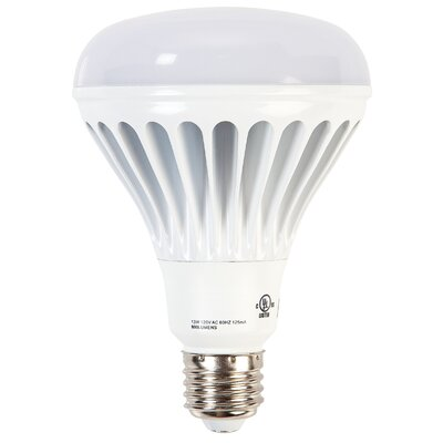13W LED Light Bulb