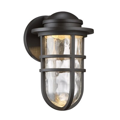 Steampunk 1-Light LED Outdoor Bulkhead Light Finish: Bronze