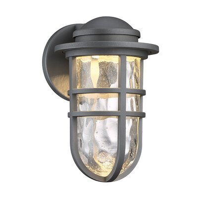 Steampunk 1-Light LED Outdoor Bulkhead Light Finish: Graphite