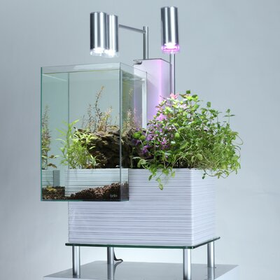 9.5 Gallon Aquaponics System Aquarium Kit Color: White
