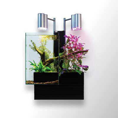 9.5 Gallon Brio Aquaponics Aquarium Kit Color: Black
