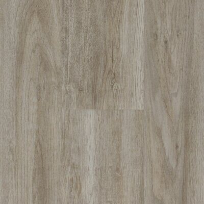 Verarise 6 x 48 x 2 mm Luxury Vinyl Plank in Gray Pearl