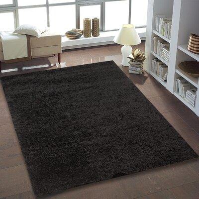Shaggy Fine Black Area Rug Rug Size: 52 x 75