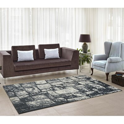 Nehemiah Patch Light Gray Indoor Area Rug Rug Size: 39 x 55