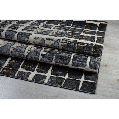 Alina Gray Area Rug Rug Size: 63 x 93