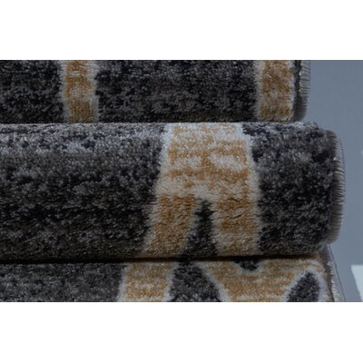Aztec Falls Gray Area Rug Rug Size: Rectangle 27 x 411