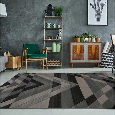 Ramage Black/Gray Area Rug Rug Size: Rectangle 27 x 411