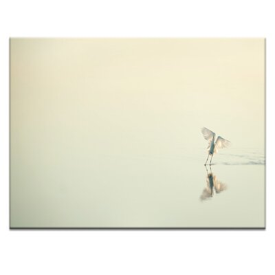'White Over White' Photographic Print on Wrapped Canvas Size: 16