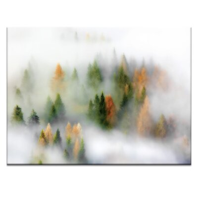 'Autumn Cloud' Photographic Print on Wrapped Canvas Size: 16