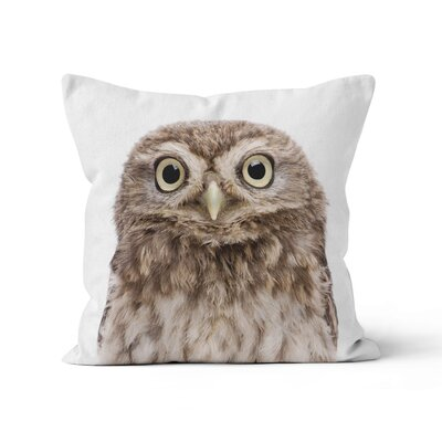 Owl Throw Pillow Size: 20 H x 20 W x 3 D
