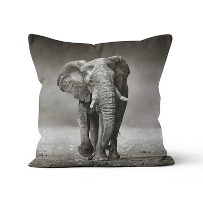 Elephant Throw Pillow Size: 16