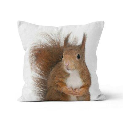 Squirrel Throw Pillow Size: 20 H x 20 W x 3 D