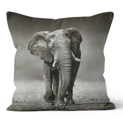 Elephant Throw Pillow Size: 16 H x 16 W x 3 D