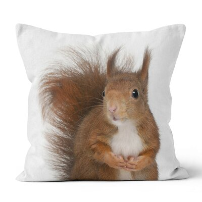 Squirrel Throw Pillow Size: 16 H x 16 W x 3 D