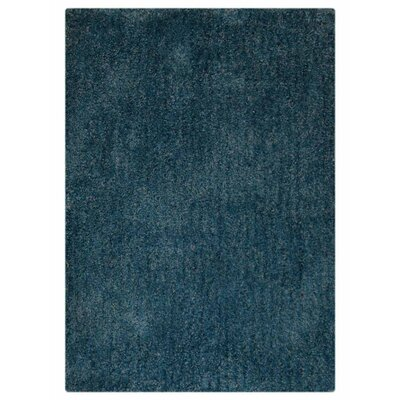 Ry Hand-Tufted Aqua Indoor/Outdoor Area Rug