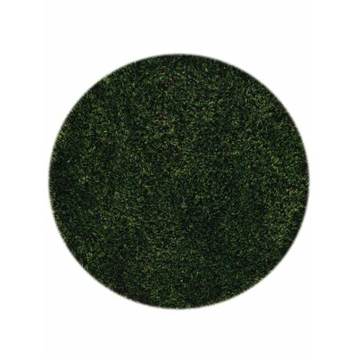 Taquan Hand Tufted Green Area Rug Rug Size: Round 8
