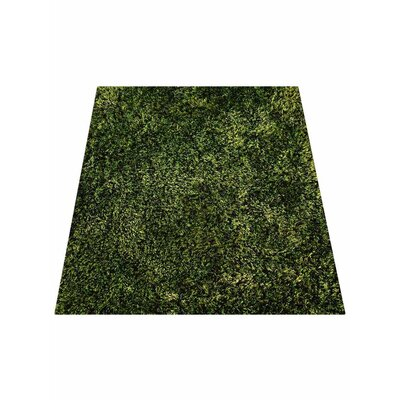 Predmore Hand-Tufted Green Area Rug Rug Size: Rectangle 8 x 10
