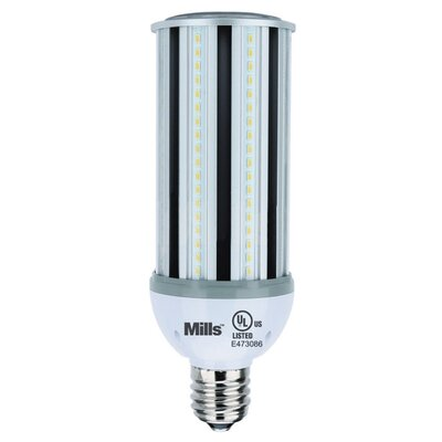 45W E39 LED Light Bulb Bulb Temperature: 4000K Cool White