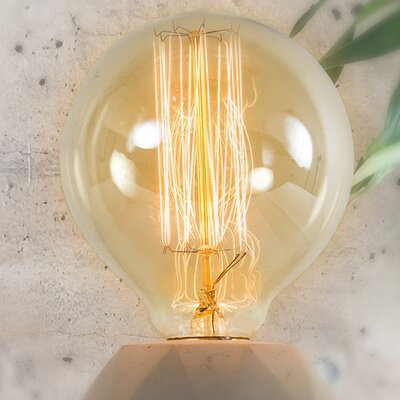 40 W E26/Medium (Standard) Incandescent Vintage Filament Light Bulb