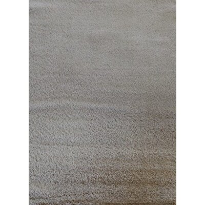 Super Shaggy Cream Area Rug Rug Size: 5 x 75