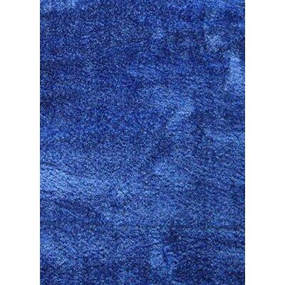 Shaggy Blue Area Rug