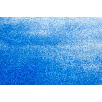Shaggy Blue Area Rug