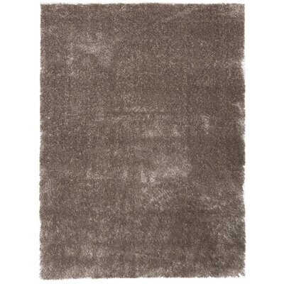 Shaggy Light Brown Area Rug