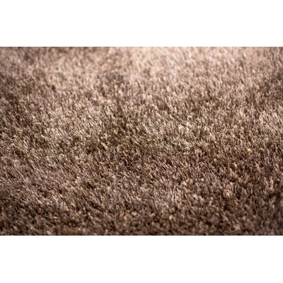 Shaggy Dark Brown Area Rug