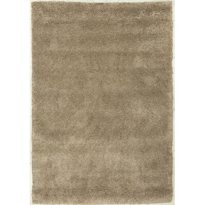 Super Shaggy Light Brown Area Rug Rug Size: 5 x 75