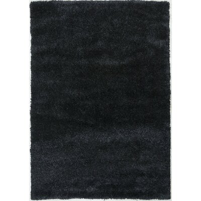 Super Shaggy Black Area Rug Rug Size: 8 x 11