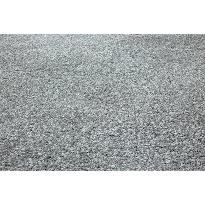 Super Shaggy Gray Area Rug Rug Size: 3 x 5