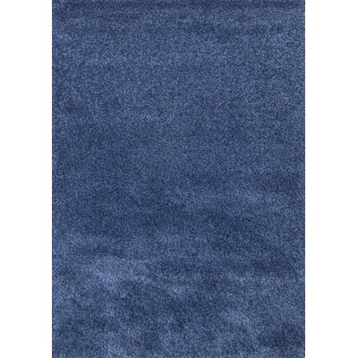 Super Shaggy Blue Area Rug Rug Size: 5 x 75