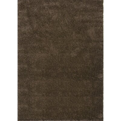 Super Shaggy Brown Area Rug Rug Size: 5 x 75
