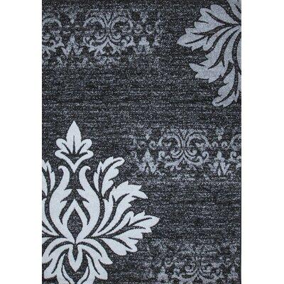 Floret Gray/Black Area Rug Rug Size: 5 x 75