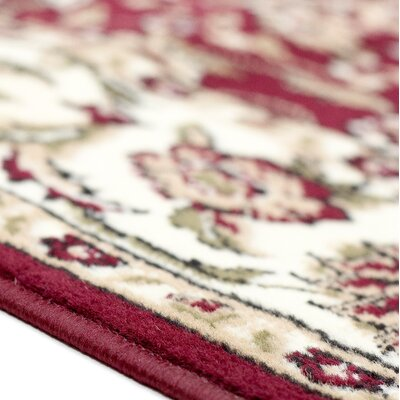Sun Ray Outline Red Area Rug Rug Size: 1'8