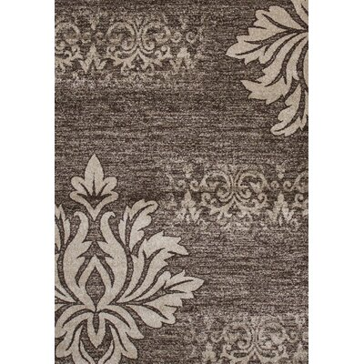 Floret Brown/Beige Area Rug Rug Size: 5 x 75