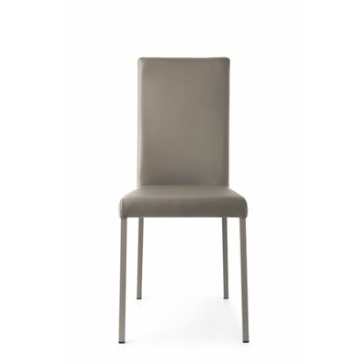 Garda Upholstered Side Chair Upholstery: Ekos Gray