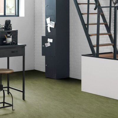 Marmoleum Click Cinch Loc 11.81 x 35.43 x 9.9mm Cork Laminate Flooring in Green