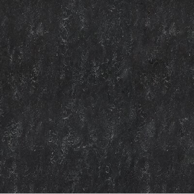 Marmoleum Click Cinch Loc 11.81 x 11.81 x 9.9mm Cork Laminate in Black