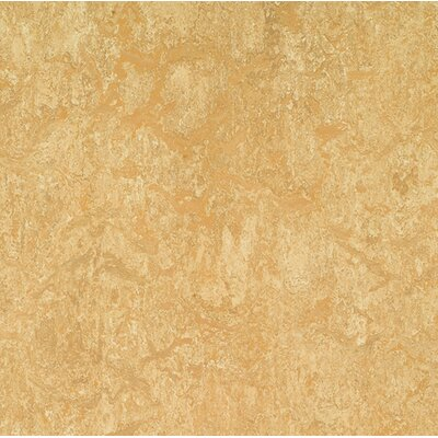 Marmoleum Click Cinch Loc 11.81 x 11.81 x 9.9mm Cork Laminate in Tan
