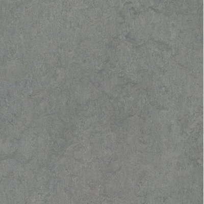 Marmoleum Click Cinch Loc 11.81 x 35.43 x 9.9mm Cork Laminate Flooring in Gray